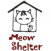 Meow Shelter